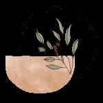 Comptoir de Lawsonia